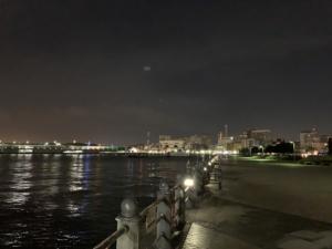12月末の赤レンガパーク